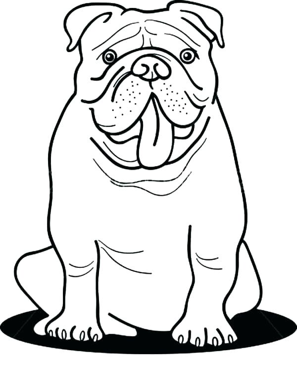 Bulldog coloring pages - Hellokids.com