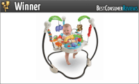 2017 Best Baby Bouncer Reviews - Top Rated Baby Bouncer