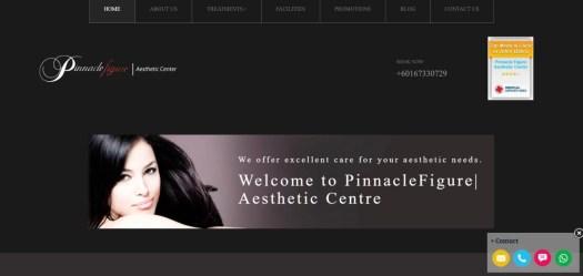 Pinnacle Figure Aesthetic Center. malaysia