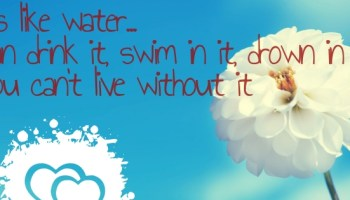 Beautiful Women Quotes On Facebook Covers