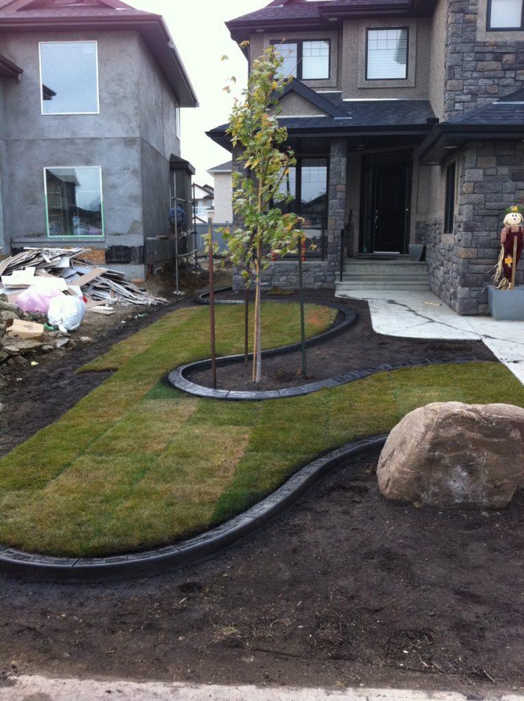 really interesting front yard design