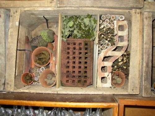 Bushell Box Bug Hotel