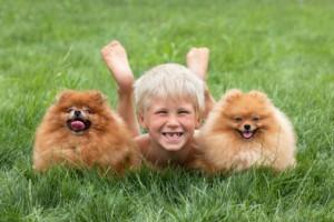 http://bestdentistnews.com/tag/summer-dental-care/