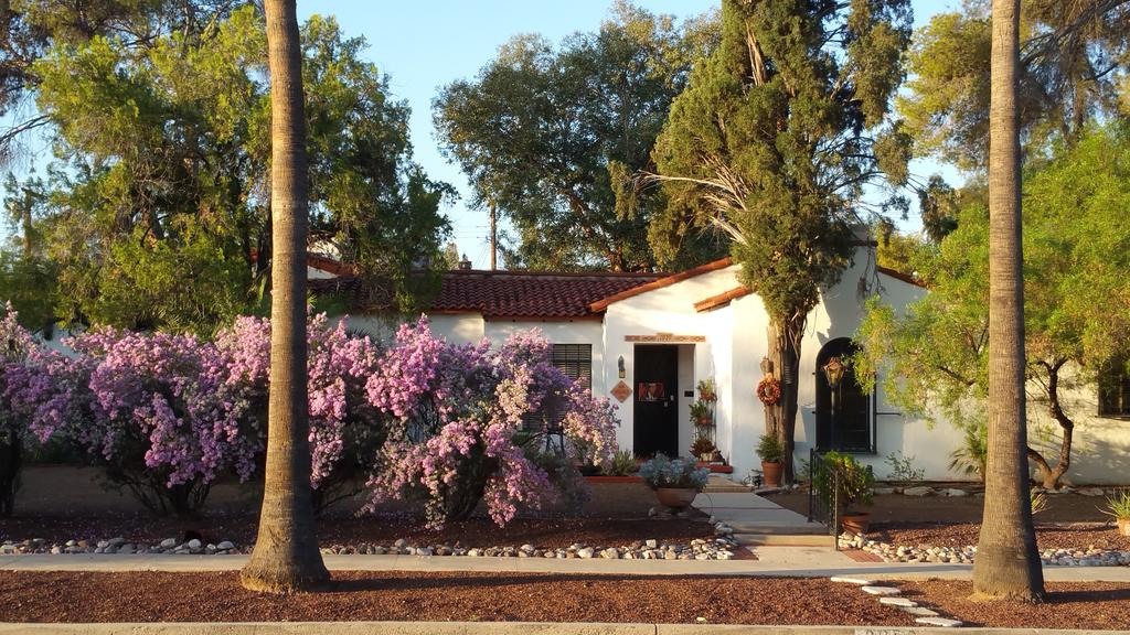 Best areas to stay in Tucson, AZ for young travelers - UofA area