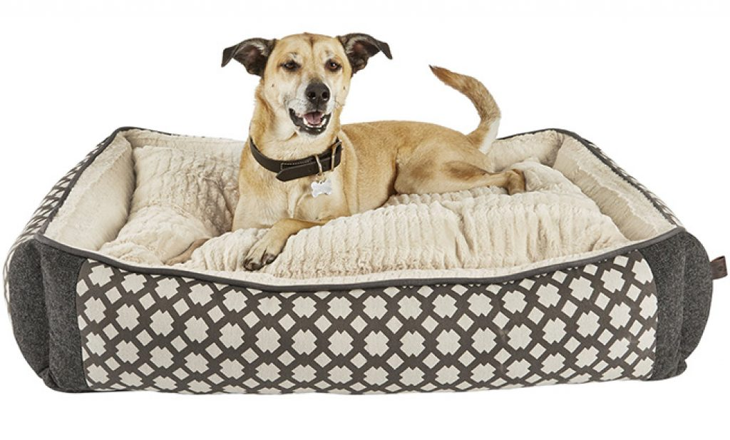 big dog sofa bed pillow covers for top 6 best orthopedic reviews 2017
