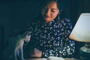 cat sitting services kitty sitting in kelowna-min