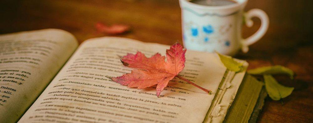 Welttag des Buches - Beliebte Historienromane | Gebrauchtes Buch liegt aufgeschlagen auf Tisch