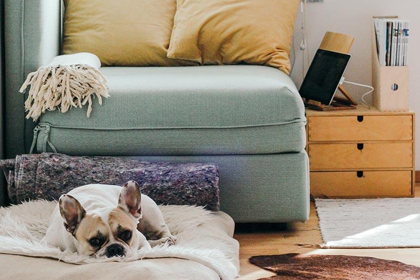 Gib deinen alten IKEA-Möbeln eine zweite Chance