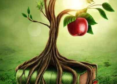 Hoegaarden Verboden Vrucht