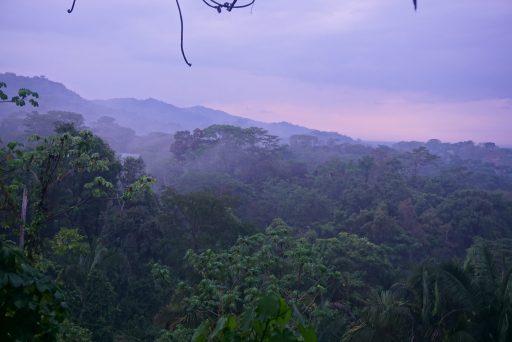 Redenen Costa Rica bezoeken