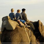 Best African Safaris for Families