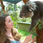 Top Family Attractions In Melbourne