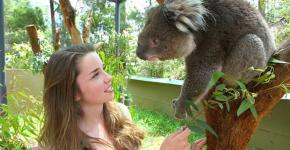 Family Attractions in Melbourne