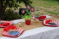 Backyard BBQ Party Decorating Ideas | Fire Pit Design Ideas