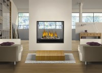 2 Sided Gas Fireplace Inserts | FIREPLACE DESIGN IDEAS