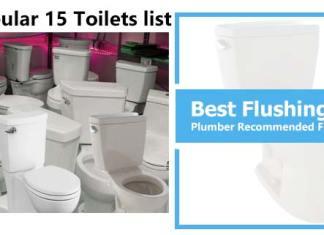 Best Flushing Toilets