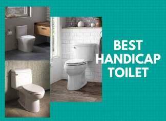 Best Handicap Toilet
