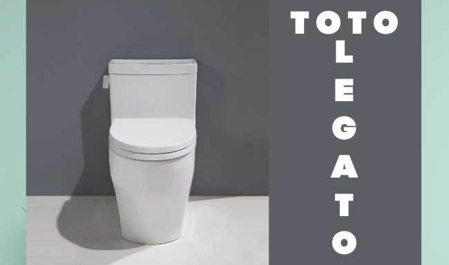 Toto Legato