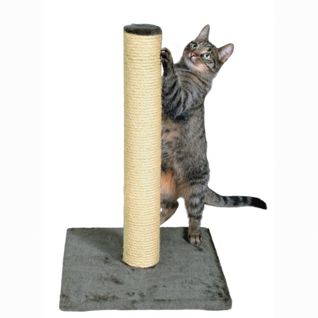 Trixie Parla Scratching Post