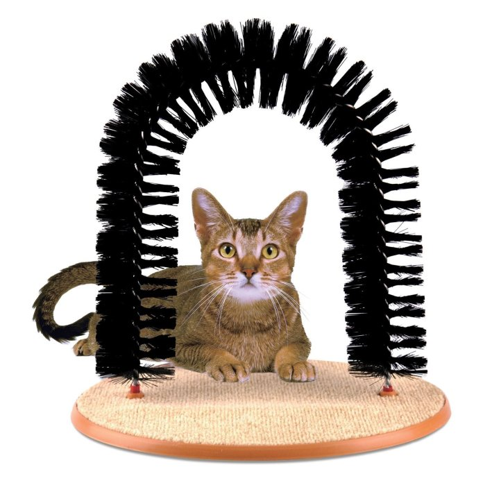 The Prime Paws Amazing Arch is available to buy here for £7.99.