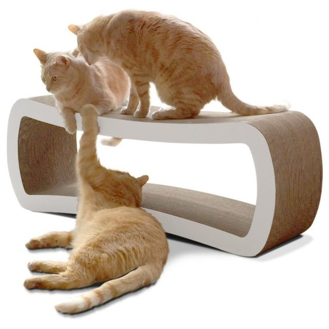 The PetFusion Jumbo Cat Scratcher Lounge