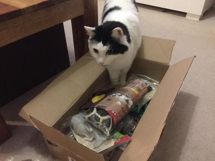 4cats Valerian Toys