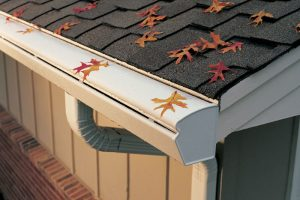 Best Gutter Guard Reviews