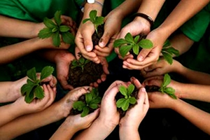 How to Protect Our Environment - 22 Tips to protect environment