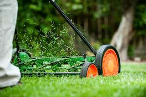 How to Mow the Lawn Properly