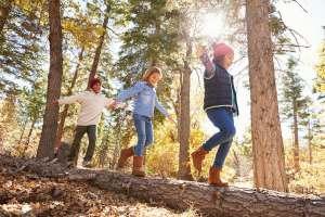How Do Children Choose Their Friends