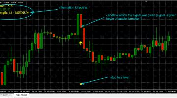Forex secret profit levels indicator
