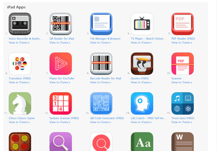 Download File Manager for iPad
