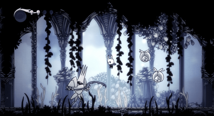 Hollow Knight switch
