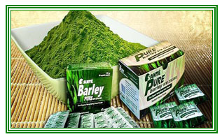 The Advantages of taking Sante Pure Barley