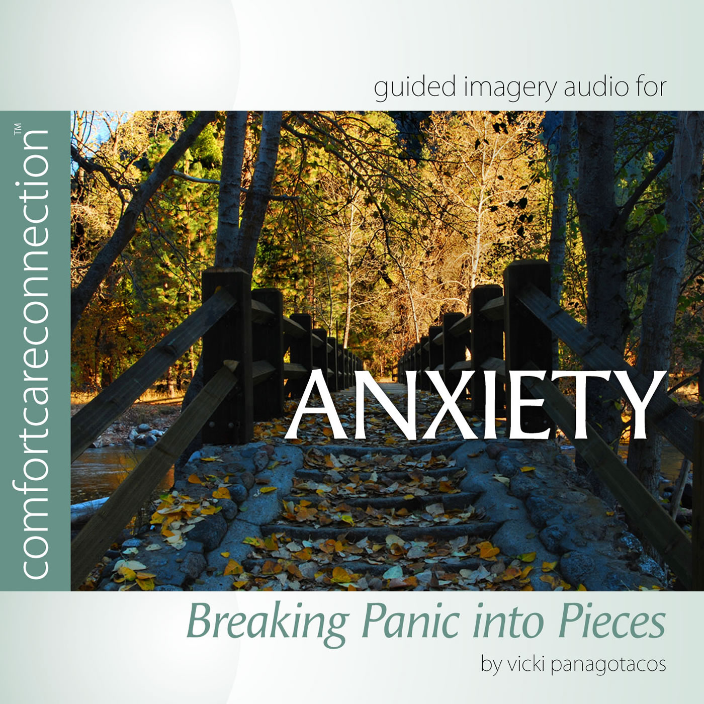 Anxiety:Breaking Panic into Pieces