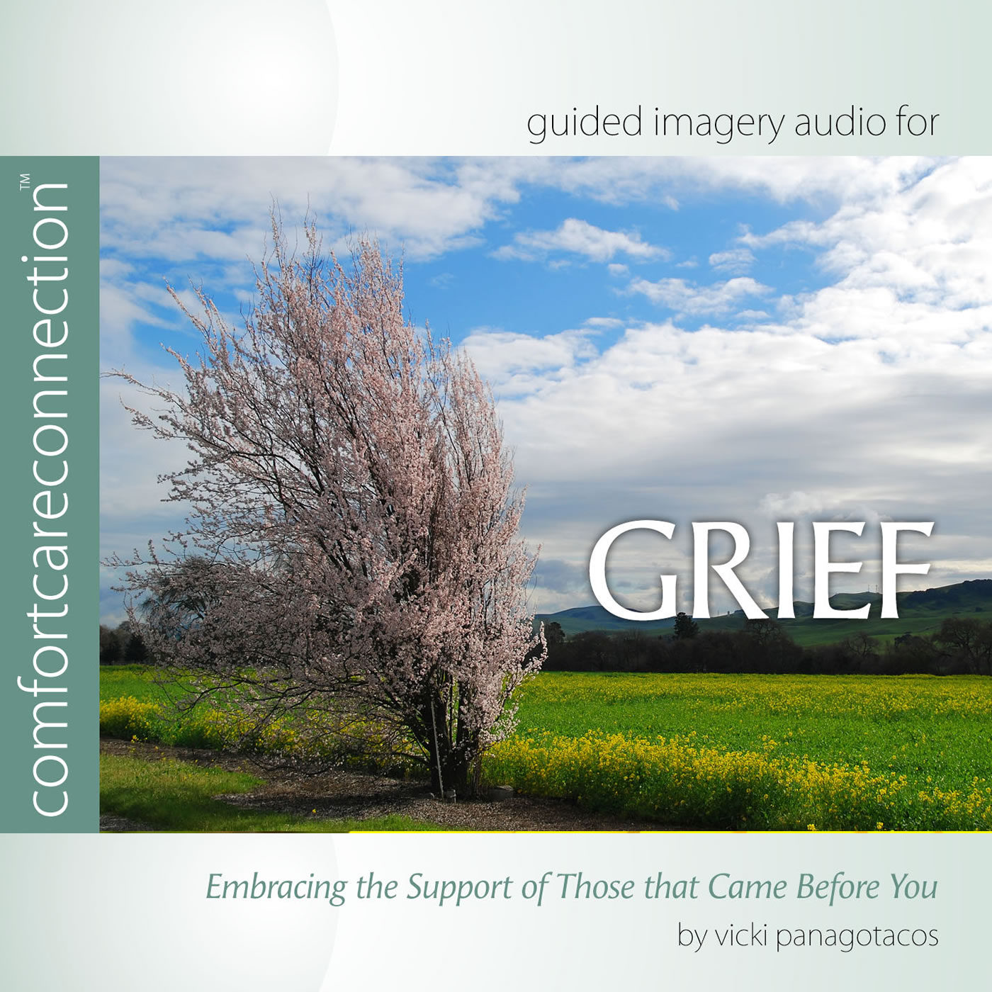 Grief: Embracing the Support…