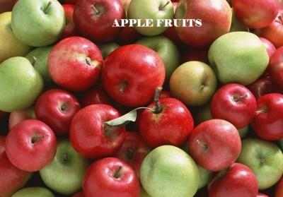 fiber in Apple