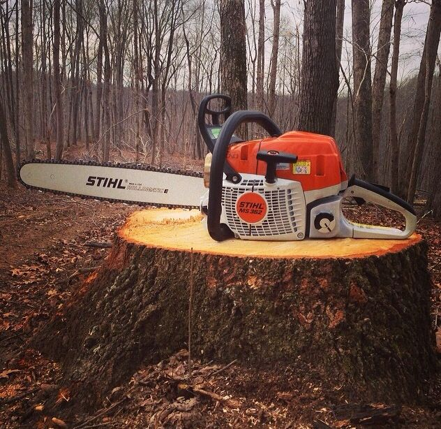 How to Remove a Tree Stump with a Chainsaw | Best Home Gear