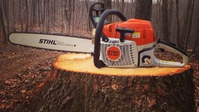Photo of How to Cut and Remove a Tree Stump with a Chainsaw