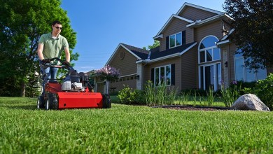 How To Use a Lawn Aerator | Best Home Gear