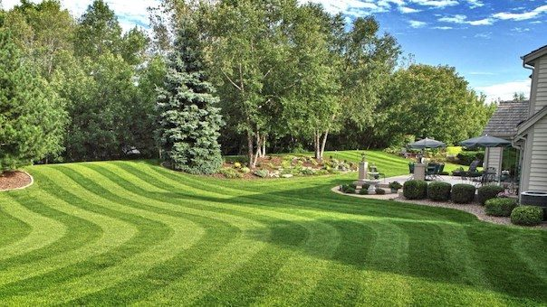 Best Mower for Stripes | Best Home Gear