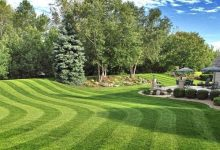 Photo of Best Electric Mower for Stripes in 2020