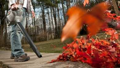 Photo of Leaf Blower Techniques – 8 More Ways to use your Leaf Blower!