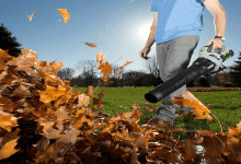 Cordless Leaf Blower   Best Blower For Leaves   Best Home Gear