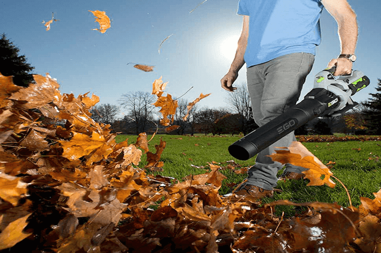 Cordless Leaf Blower | Best Blower For Leaves | Best Home Gear