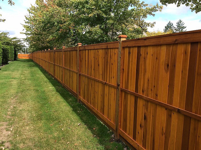 Cheapest Way To Build A Wood Privacy Fence Diy 2019