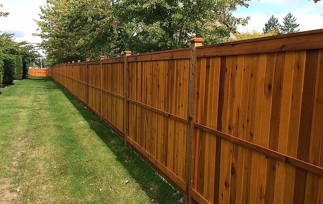 Photo of Cheapest Way to Build a Wood Privacy Fence | DIY 2019