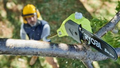 Photo of The 7 Best Pole Saws [Reviews] For 2020