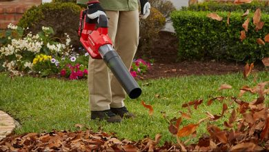 Photo of Best Cordless Leaf Blowers [Reviewed For 2020]