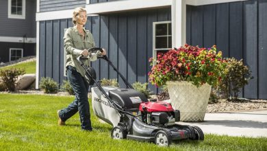 Photo of The 8 Best Self Propelled Lawn Mower | Reviews For 2020
